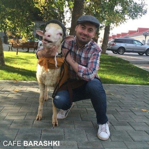 Cafe Barashki